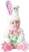 Konijn kostuum voor baby's - Premium - Kinderkostuums - 62/68
