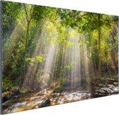 Zonnestralen door bladerdek Aluminium 90x60 cm - Foto print op Aluminium (metaal wanddecoratie)