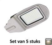 30W LED Straatlamp | 4000K |Als terrein, oprit en pleinverlichting|set van 5