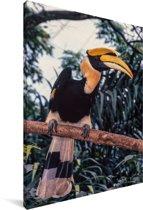 Dubbelhoornige neushoornvogel op een tak Canvas 60x90 cm - Foto print op Canvas schilderij (Wanddecoratie woonkamer / slaapkamer)