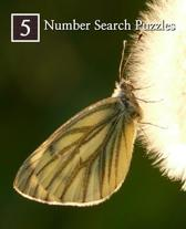 Number Search Puzzles 5