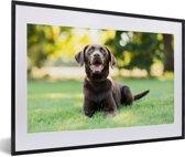 Foto in lijst - Een Labrador Retriever ligt in het gras fotolijst zwart met witte passe-partout 60x40 cm - Poster in lijst (Wanddecoratie woonkamer / slaapkamer)