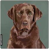 Bruine Labrador waakbord