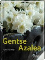 Gentse Azalea