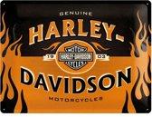 Harley-Davidson 1903 Metalen wandbord in reliëf 30x40 cm