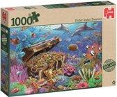 Onderwater Schat 1000 stukjes