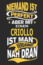 Niemand ist perfekt aber mit einem Criollo ist man verdammt nah dran