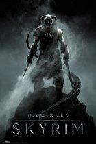 GBeye Skyrim Dragonborn Poster 61x91,5cm