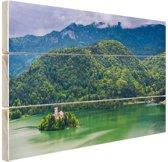 Slovenie Oost-Europa Hout 80x60 cm - Foto print op Hout (Wanddecoratie)