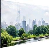 Groen park in Chicago Aluminium 60x40 cm - Foto print op Aluminium (metaal wanddecoratie)