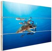 FotoCadeau.nl - Haai met vissen Hout 80x60 cm - Foto print op Hout (Wanddecoratie)