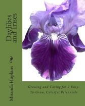 Daylilies and Irises