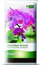 Pokon RHP Orchidee Grond - 5L