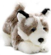 Bicolini Knuffelhond Husky 23 Cm