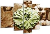 Glasschilderij Bloem | Groen, Bruin | 170x100cm 5Luik | Foto print op Glas |  F002784
