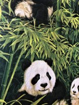 Behang bamboe & panda