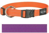 Rogz For Dogs Fanbelt Halsband - Paars - 20 mm x 34-56 cm