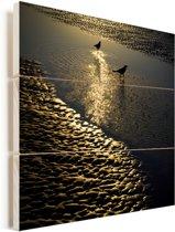 Twee bootstaarttroepialen tijdens een zonsopgang op zoek naar voedsel Vurenhout met planken 50x50 cm - Foto print op Hout (Wanddecoratie)
