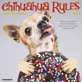 Chihuahua Rules Kalender 2020