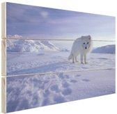 Poolvos in de sneeuw Hout 160x120 cm - Foto print op Hout (Wanddecoratie) XXL / Groot formaat!