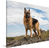 Duitse herdershond op een berg Canvas 40x30 cm - klein - Foto print op Canvas schilderij (Wanddecoratie woonkamer / slaapkamer) / Huisdieren Canvas Schilderijen