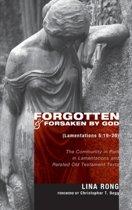 Forgotten and Forsaken by God (Lamentations 5