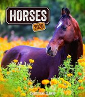 Paarden - Horses 30x34 Kalender 2020