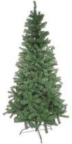 Kerstboom woodland pine 240cm