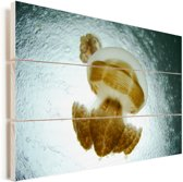 De Mastigias kwallen in het beroemde kwallenmeer Palau Vurenhout met planken 60x40 cm - Foto print op Hout (Wanddecoratie)
