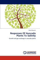 Responses of Avocado Plants to Salinity