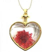 Prachtige hart ketting met echte gedroogde bloem - rood