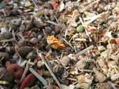 Schildpadvoer.nl Schildpaddenvoer Mix - Voor Alle Landschildpadden - 1 Liter