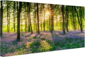 FotoCadeau.nl - Kleurrijke bloemen in het bos Canvas 80x60 cm - Foto print op Canvas schilderij (Wanddecoratie)
