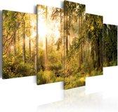 Schilderij - Magie in het Bos, 5luik