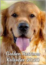 Golden Retriever Maandkalender 2020