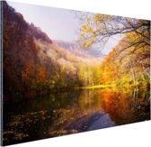 De typische herfstachtige natuur Aluminium 60x40 cm - Foto print op Aluminium (metaal wanddecoratie)