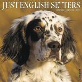 Just English Setters 2019 Wall Calendar (Dog Breed Calendar)