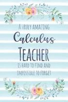 A Truly Amazing Calculus Teacher Is Hard to Find and Impossible to Forget