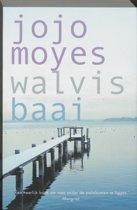 Boekomslag van 'Walvisbaai'