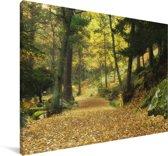 Herfstbossen in het Nationaal park Sierra de Guadarrama in Spanje Canvas 30x20 cm - klein - Foto print op Canvas schilderij (Wanddecoratie woonkamer / slaapkamer)