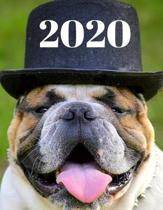 2020 Weekly Planner With Bulldog Cover: Daily Agenda For Week, Day, Month & Year Plans - Organizer for Dog or Pet Owner: Gift Appointment Book - Funny