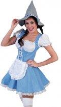 Oktoberfest Beieren jurk voor dames 44-46 (2xl/3xl)