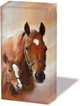 Ambiente  1 pakje zakdoekjes  Paard met veulen.