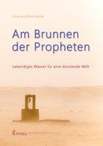 Am Brunnen der Propheten