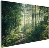 Een dichtbegroeid bos Glas 90x60 cm - Foto print op Glas (Plexiglas wanddecoratie)