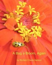 A Bug a Bloom, Again