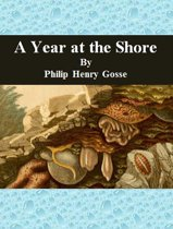 A Year at the Shore