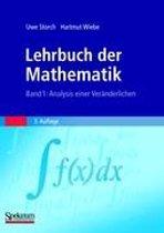Lehrbuch Der Mathematik, Band 1