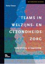 Methodisch werken - Teams in welzijns-en gezondheidszorg