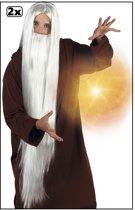 2x Pruik met baard Wizard